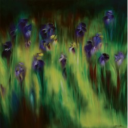 Le massif d'iris